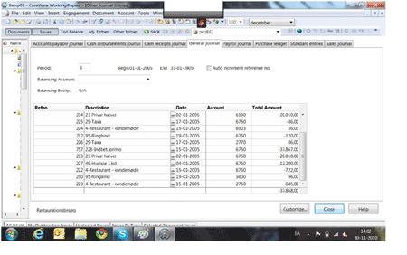 Skærmbillede fra CaseWare revisionsprogram
